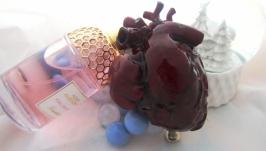 Анатомическое сердце на подставке