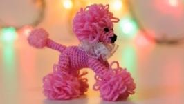 тут изображено Розовый Пудель