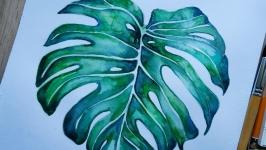 Ботанічна Ілюстрація, скетчінг, живопис акварель