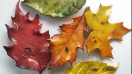 Осінній листочок