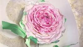 тут изображено Роза ′Нежность′