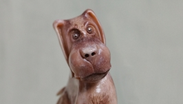 Грустный  пёс