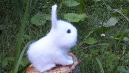 Кролик белый