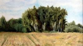 Среди полей 1