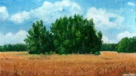 Среди полей. Август 1