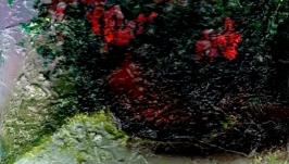 Красные цветы в горшке