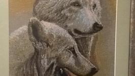 Пара вовків