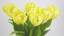Тюльпаны. Цветы из полимерной глины.