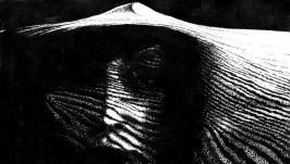 Женщина в песках 2 (Кобо Абэ)