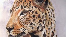 Wild cat - watercolor