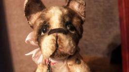 Милая собачка Преся 2.0
