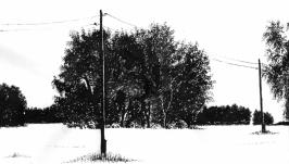 Среди зимы 3