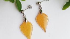 Сережки з листям берези в ювелірній смолі