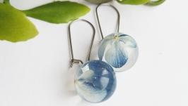 Сережки з синіми гортензіями в ювелірній смолі