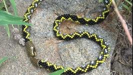 Жгут Змея