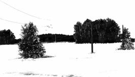 Среди зимы 8