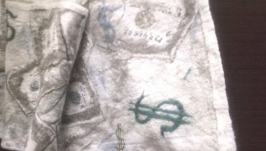 мужской шарф Доллар