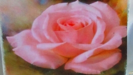 Подставка под телефон,смартфон,планшет ′Роза′, подарок девушке