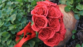 Букет роз Красный