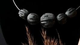 Бутоны черного тюльпана