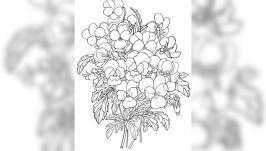 Картинка антистресс-раскраска ′Букет цветов 02′