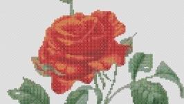 Схема для вышивки картины крестом - Роза алая