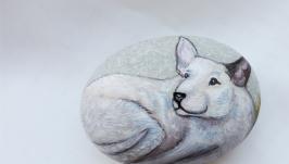 Собаки белые