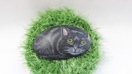Кот черный