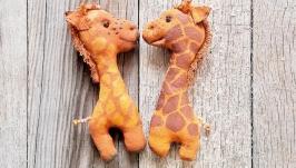 Пара закоханих жирафів