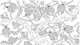 Мега-раскраска ′Аквариум′ 100х70см (раскраска для детей)