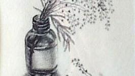 Веточка мимозы    The Sprig of mimosa