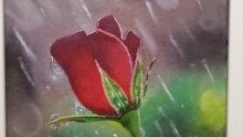 Картина ′Роза под дождем′