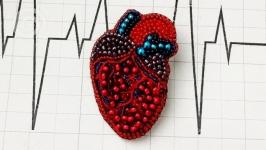 Анатомическое сердце брошь из бисера