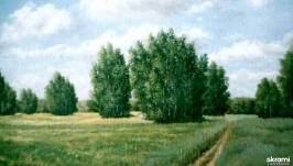 Среди полей – дорога
