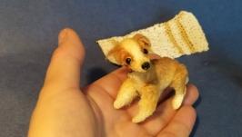 Миниатюрный щенок