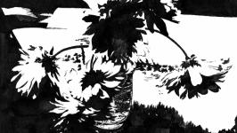 Цветы в черном  Flowers in black