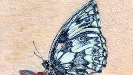 Миниатюра ′Бабочка на суккуленте′
