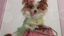 картина  крестиком ′ Собачка чихуа-хуа с сумочкой′