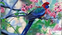 картина* Попугай с цветочками*