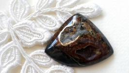 Ammonite geode - cabochon
