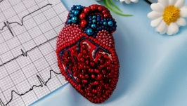 Anatomical heart red brooch, gift for doctor, nurse medical student: Handma