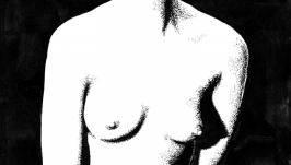 Силуэт обнаженной  Nude Silhouette