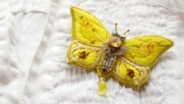Брошь бабочка ′Лимонница′