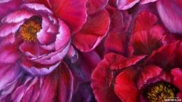 Oil painting ′Peonies′ 50 * 45 cm.