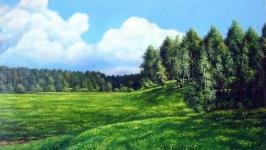 Одуванчиковые поляны  The Dandelion Glades