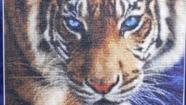 Картина вышитая крестиком ′Голубоглазый тигр′
