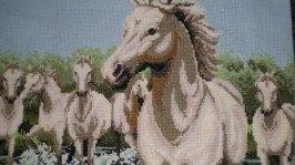 «Лошади»