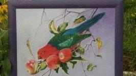 «Попугай» Живопись
