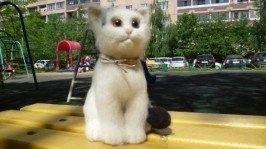 «Котик Веня»