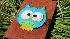 «Pretty owl»